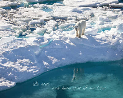 Photograph - Arctic Reflection by June Jacobsen