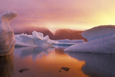 Arctic Splendour Art Print by Ralph Brunner
