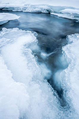 Photograph - Arctic Vortex by Tim Newton
