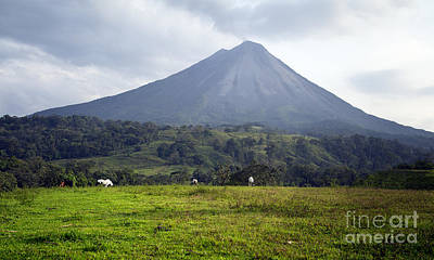 Photograph - Arenal Volcano Costa Rica by Carrie Cranwill