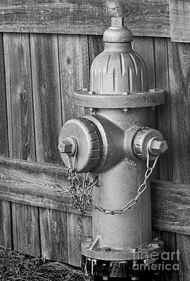 Altered Photograph - Aren't Fireplugs Red? by Dave Bosse