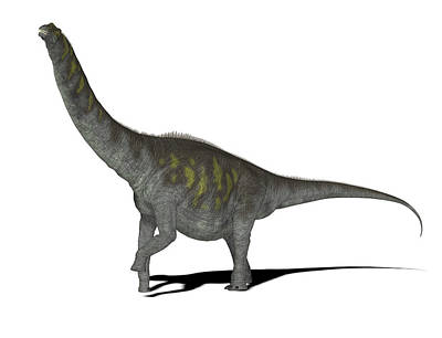 Paleozoology Photograph - Argentinosaurus Dinosaur by Friedrich Saurer