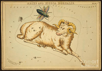 Photograph - Aries Constellation Zodiac Sign 1825 by Science Source