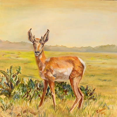 Sonora Painting - Arizona Sonora Desert Pronghorn by Charme Curtin