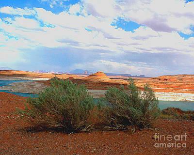 Photograph - Arizona  Desert Landscape by Merton Allen