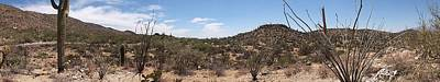Photograph - Arizona Desert Panorama by Joe Kozlowski