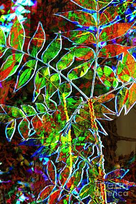 Digital Art - Arizona Fall Collage by Georgianne Giese