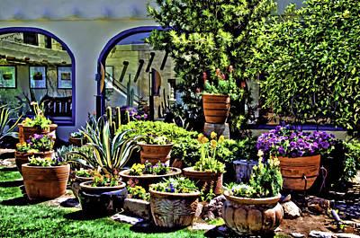 Photograph - Tucson Garden by Maria Coulson