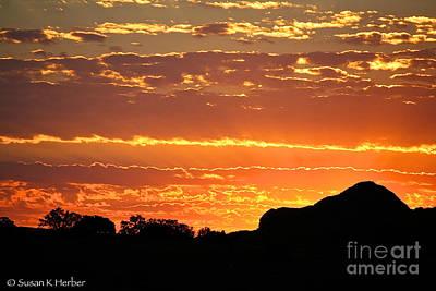 Photograph - Arizona Gold by Susan Herber