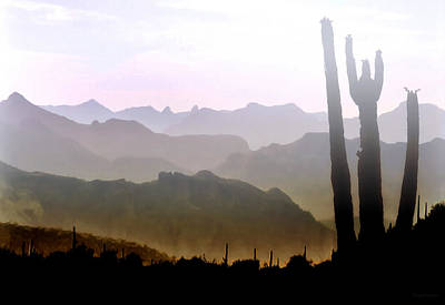 Photograph - Arizona Horizons by Barbara D Richards