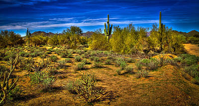 Carefree Arizona Photograph - Arizona Landscape Iv by David Patterson