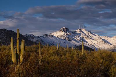 Arizona Mountains In Snow Print by Rob Travis