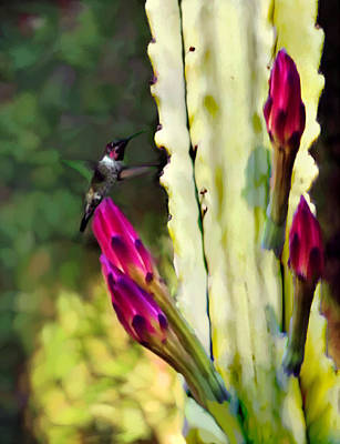 Painting - Arizona Ruby Humming Bird Painting by Bob and Nadine Johnston