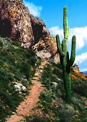 Photograph - Arizona Saguaro Tonto National Monument by Bob and Nadine Johnston