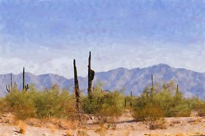 Arizona Sonoran Desert Art Print by Betty LaRue