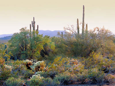 Carefree Arizona Photograph - Arizona Spirit by Gordon Beck