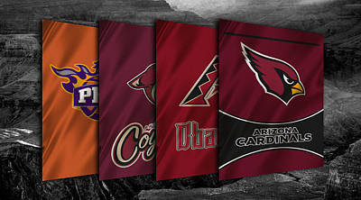 Arizona Sports Teams Art Print