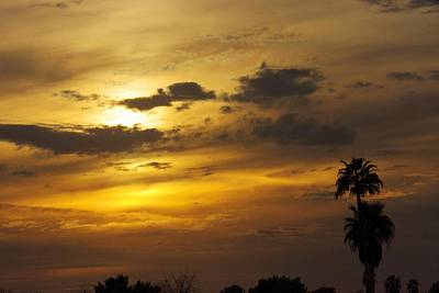 Photograph - Arizona Sunset by David Rizzo