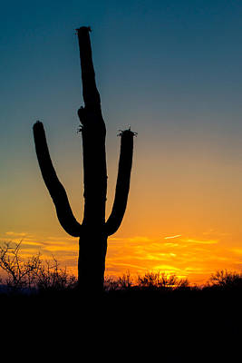 Farmhouse Rights Managed Images - Arizona Sunset Royalty-Free Image by Peter Verdnik