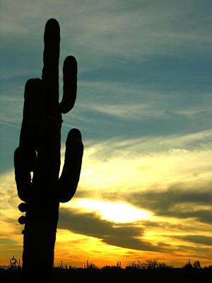 Photograph - Arizona Sunset by Robert Lozen