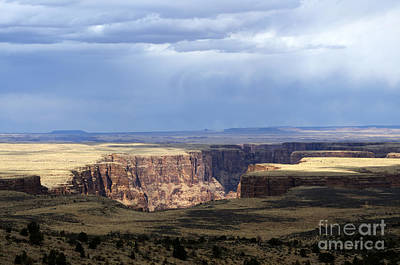 Photograph - Arizona The Grand Canyon State by Bob Christopher