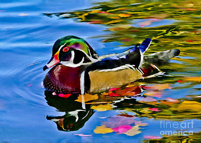 Carolina Duck Painting - Arizona Wood Duck  by Bob and Nadine Johnston