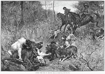 Arkansas Painting - Arkansas Boar Hunt, 1887 by Granger