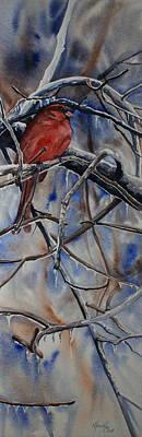 Arkansas Painting - Arkansas Cardinal by Kitty Harvill