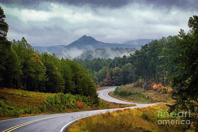 Arkansas Logging Road  Art Print by Richard Mason