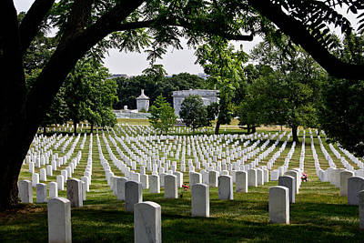 Photograph - Arlington Cemetery With Tree by John McGraw