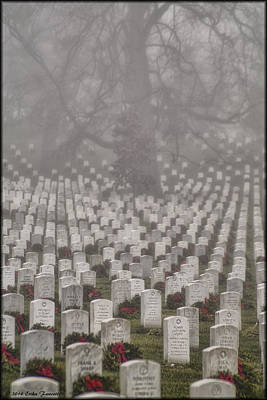 Photograph - Arlington Foggy Christmas by Erika Fawcett