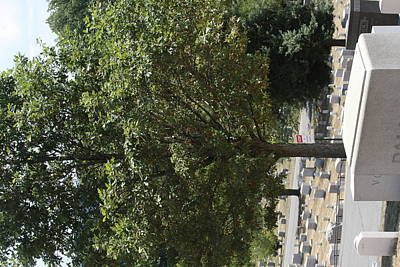 Headstones Photograph - Arlington National Cemetery - 121228 by DC Photographer