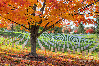 Photograph - Arlington National Cemetery In Autumn I by Clarence Holmes