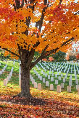 Photograph - Arlington National Cemetery In Autumn II by Clarence Holmes