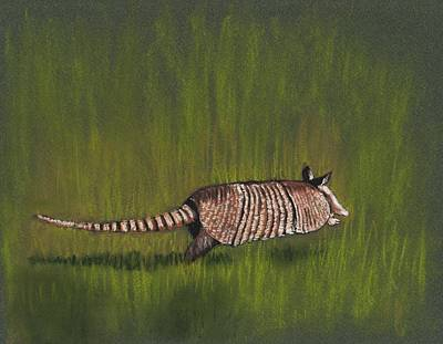 Shell Pastel Painting - Armadillo Run by Anastasiya Malakhova