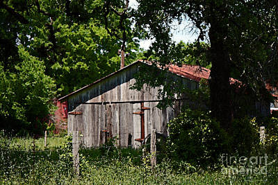 Photograph - Armistead Homestead Shed by Connie Fox