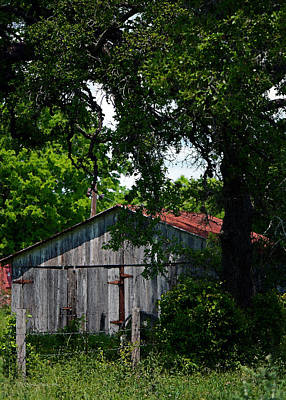 Photograph - Armistead Homestead Shed Vertical by Connie Fox