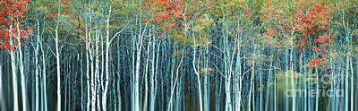 Digitally Created Photograph - Army Of Trees by Edmund Nagele