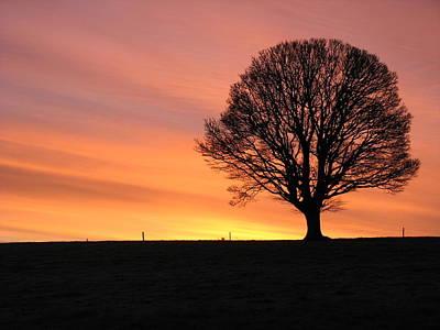 Photograph - Arora Sunrise by Joseph Doyle