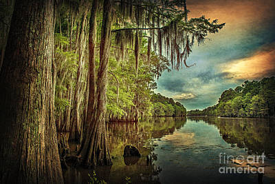 Photograph - Around The Bend On Caddo Lake by Tamyra Ayles