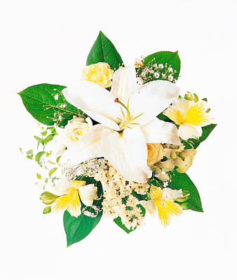 Arranged Flowers And Leaves On White Art Print