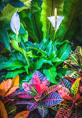 Variegated Photograph - Arrangement Of Croton And Spath - Digital Photo Art by Duane Miller