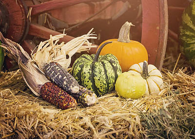 Farmstand Photograph - Arrival Of Autumn by Heather Applegate