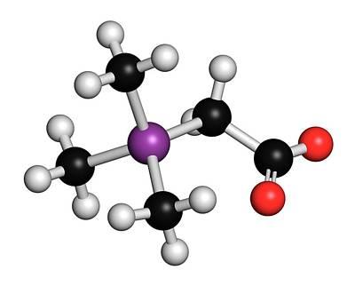 3 Fish Photograph - Arsenobetaine Organoarsenic Molecule by Molekuul