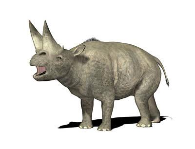 Paleozoology Photograph - Arsinoitherium Prehistoric Mammal by Friedrich Saurer