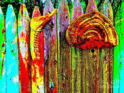 Photograph - Art Fence 14c by George Ramos