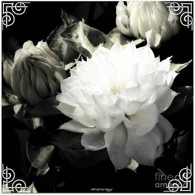 Photograph - Art Floral Deco Print by Bobbee Rickard