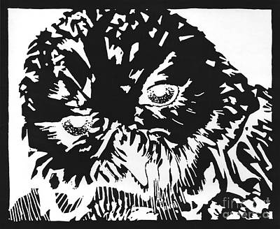 Snowy Night Drawing - Artemis by Liz Llewellyn
