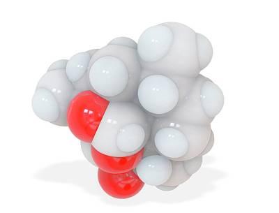 Atom Photograph - Artemisinin Antimalaria Drug Molecule by Ramon Andrade 3dciencia