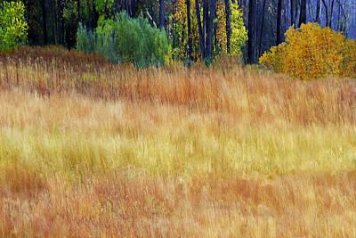 Antlers - Artesian Prairie by Mike Andre